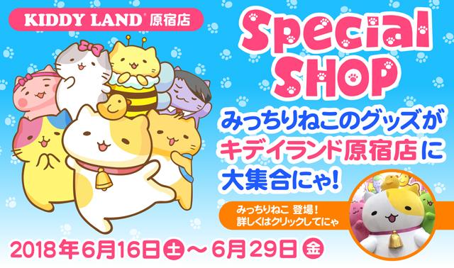Special SHOP みっちりネコのグッズがキデイランド原宿店に大集合にゃ! 2018年6月16日土~6月29日金